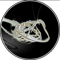Гибкий скелет
