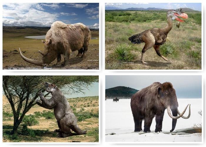 Доисторические животные Земли кто такие тетралофодоны
