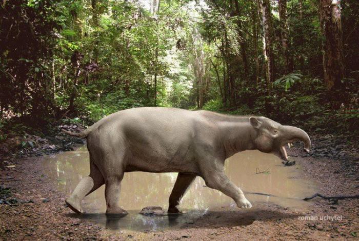 Доисторические животные древности, животные, мамонт