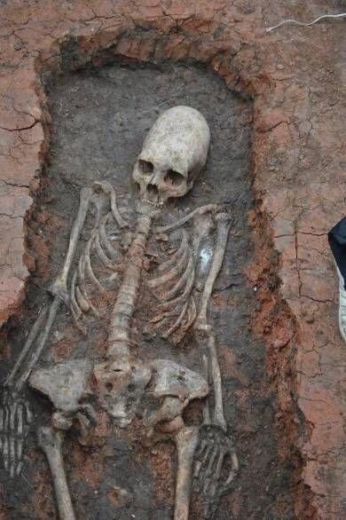 Рядом с Аркаимом раскопали скелет с вытянутым черепом