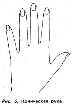 могут артистическая или коническая рука фото лица человека, также