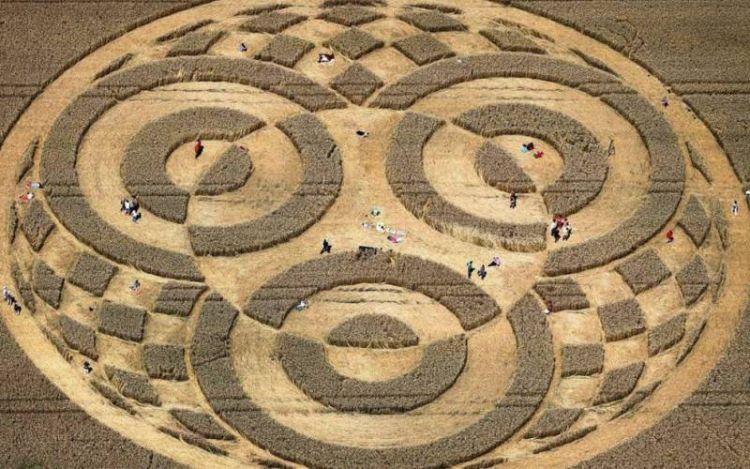 Как на самом деле появляются круги на полях