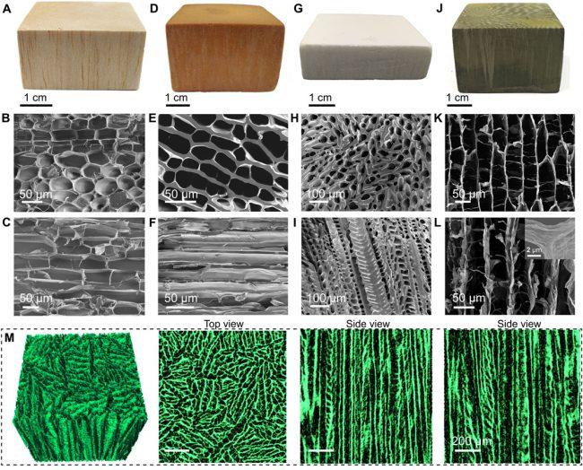 Структура полимера «искусственного» дерева
