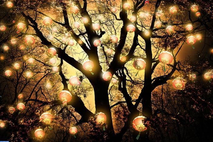 Самое интересное о свете и об освещении (11 фото)