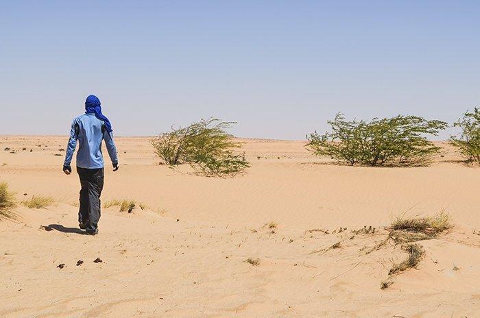 8. Что делать, если вы заблудились в пустыне выживание, жизнь, знание - сила, познавательно, полезные идеи, полезные советы, советы, хочу все знать