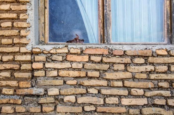 Просто дом в Бужумбре Бужумбура, Бурунди, Центральная Африка, африка, бедные страны, города Африки, нищие страны