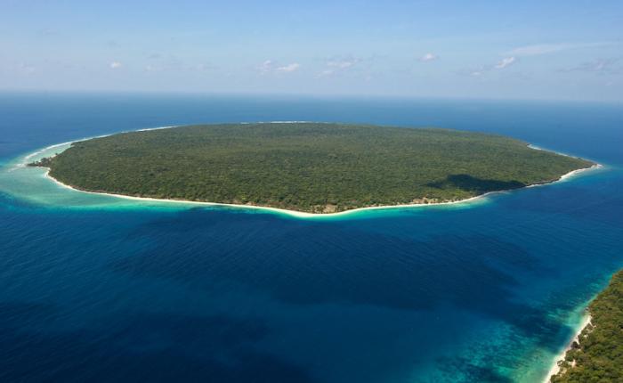 Как выжить на необитаемом острове?