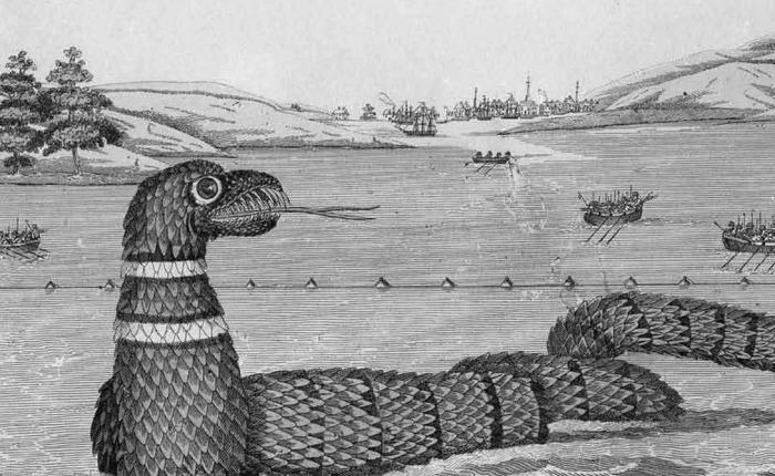 Глостерский змей Морской змей был замечен в гавани Глостер, штат Массачусетс. Первые свидетельства датированы 1638 годом, а чаще всего змей показывался в 1819 году — его видели сотни людей.
