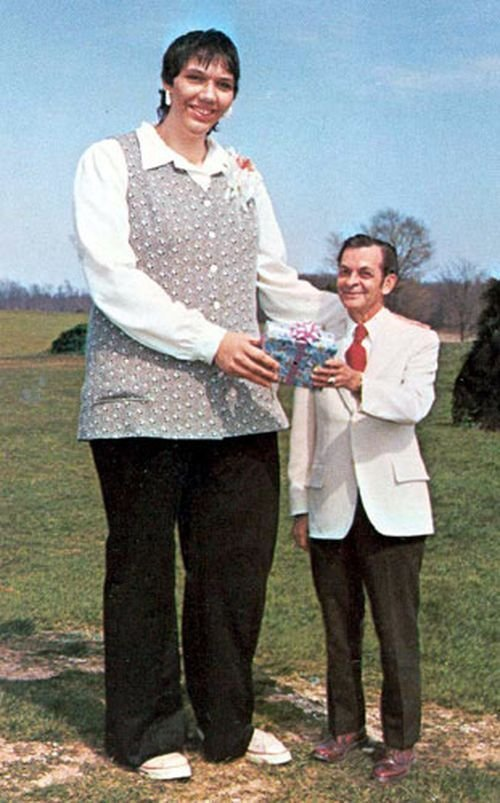 Джейн Банфорд, Англия, 241 сантиметр в мире, высота, девушки, люди, размер, рост