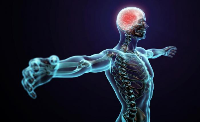Вы знали, что 99,9 % вашего тела – это пустота? (5 фото)
