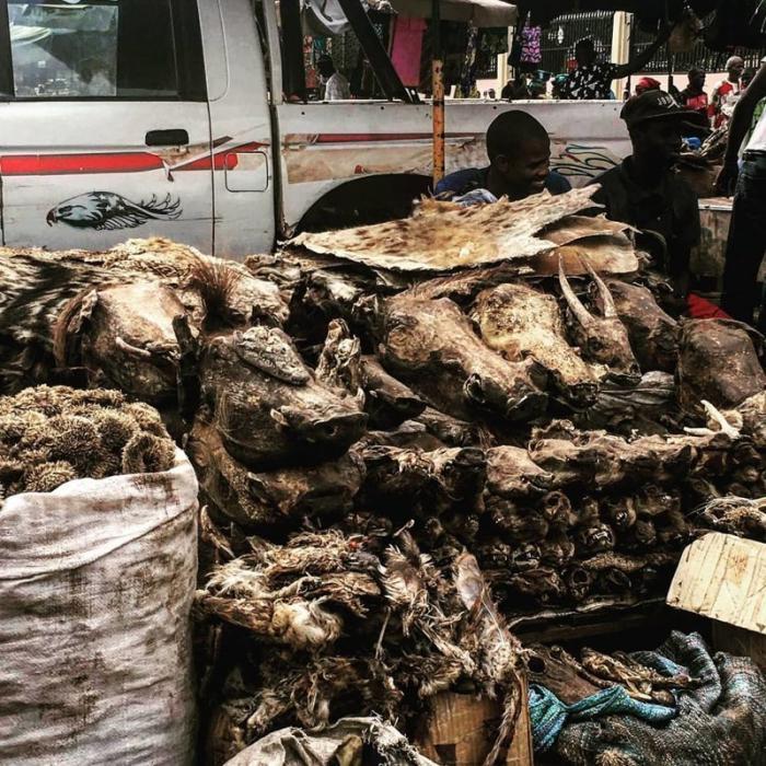 На рынках Бамако можно найти что угодно: от высушенных голов животных до огнестрельного оружия Бамако, Западная Африка, мали, путешествия, столица Мали, столицы Африки, столицы стран мира