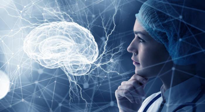 Человеческие клетки мозга, растущие у эмбриональных мышей