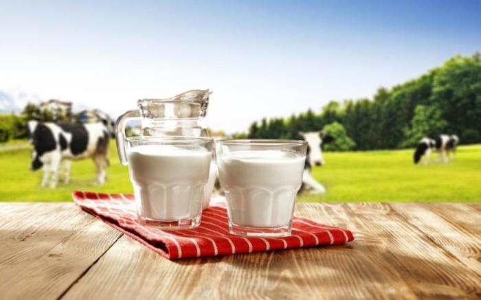 Коровы, производящие молоко с человеческими белками