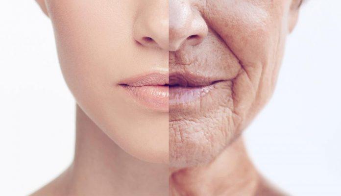 Как прокачать свой мозг, чтобы замедлить старение? (5 фото)