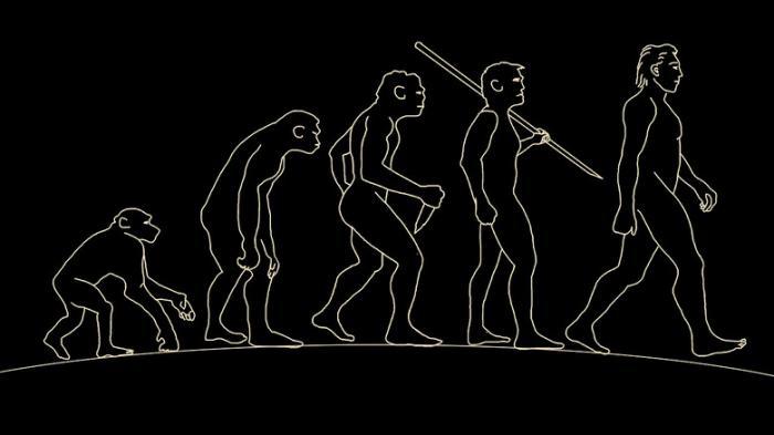 Усыхание мозга, копыта и шестой палец: Куда эволюция заведет человека