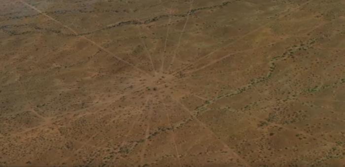 На Гавайях обнаружили древнейшую звездную карту?