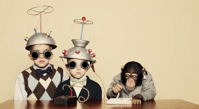Почему мы делаем глупые вещи: 10 социальных экспериментов, которые все объясняют (5 фото)