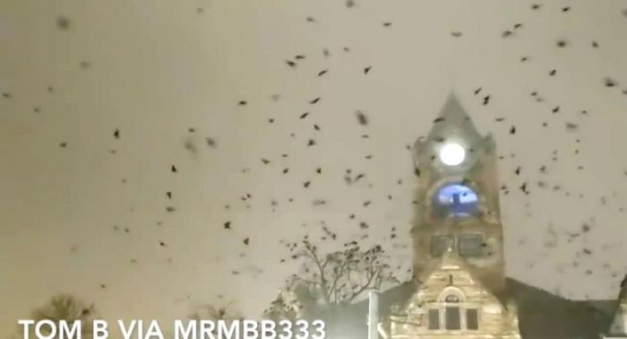 Огромная стая ворон кружила над церковью перед приходом торнадо (2 фото + видео)