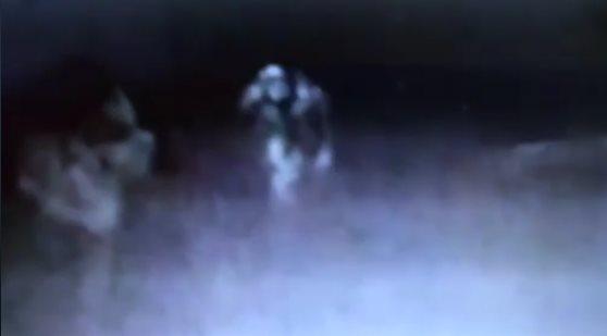 В пабе засняли пугающее существо, подкрадывающееся к посетителю (4 фото + видео)