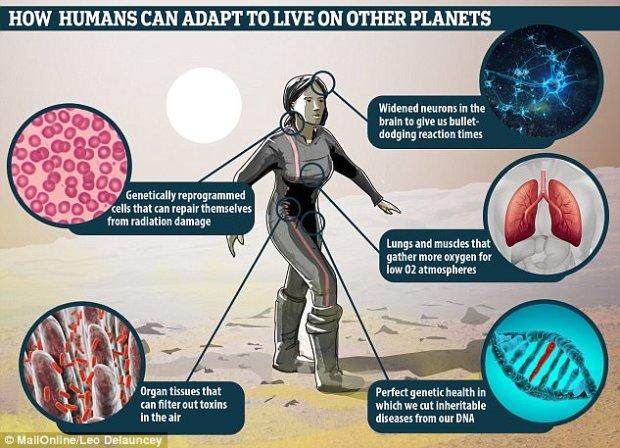 Умнее, сильнее, красивее: ученые изобразили, каким будет человечество через 1000 лет, очень оптимистично (3 фото)