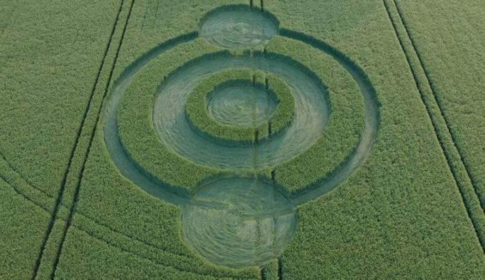 Обнаружен первый в этом году британский круг на поле
