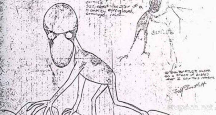 История о странном «гоблине» с огромной головой из Массачусетса (4 фото)