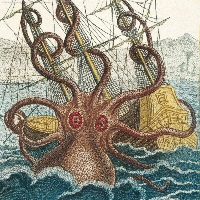 Археологи нашли доказательства существования Кракена: гигантского монстра топившего корабли