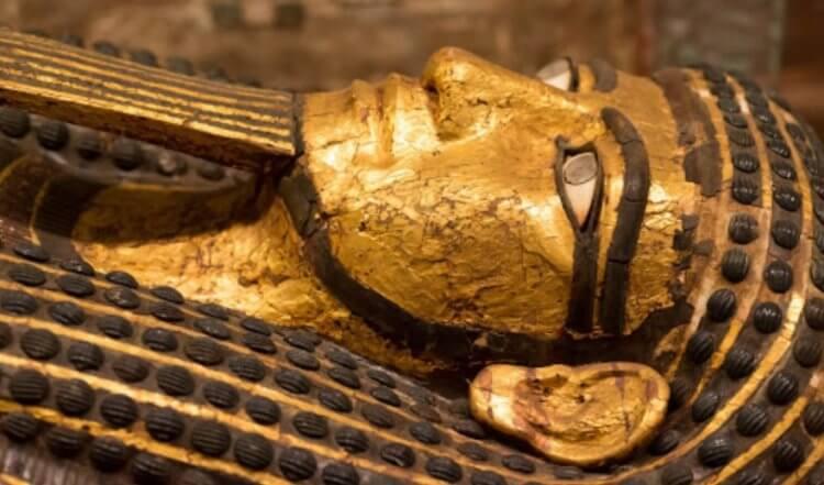 Внутри мумии обнаружили еду. Чем питались древние египтяне?