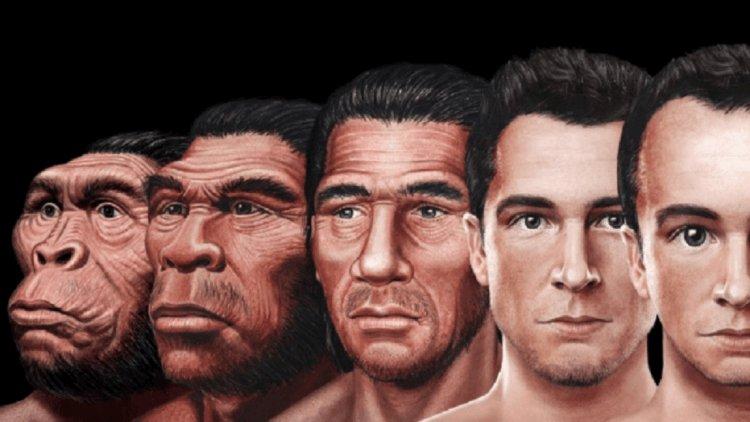 Эволюция человека – как изменятся наши лица в будущем?