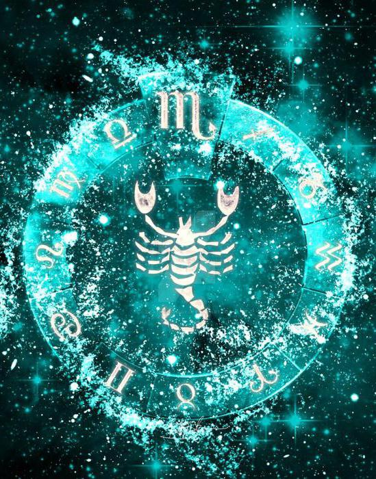 Знак зодиака скорпион дерево камень и цвет