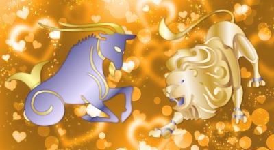 Как дружат девушка-лев и парень-козерог?