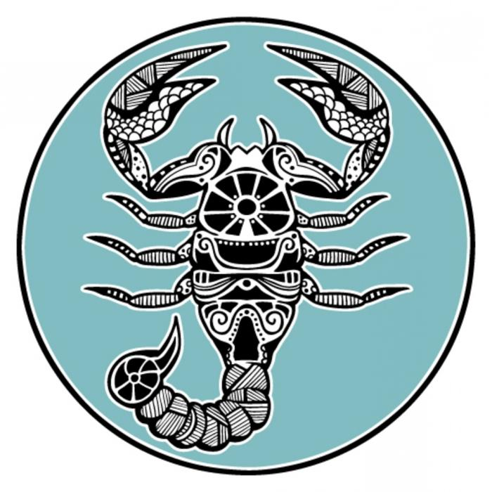 Скорпион и Лев совместимость знаков в дружбе любви и работе
