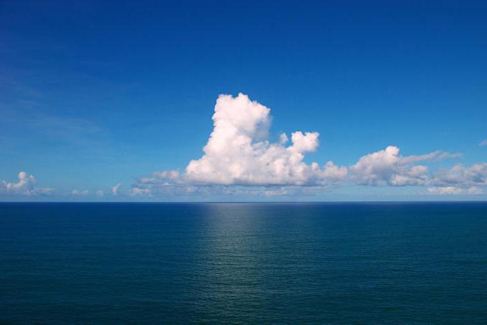К чему снится большой океан и что о снах с водой говорят популярные сонники?