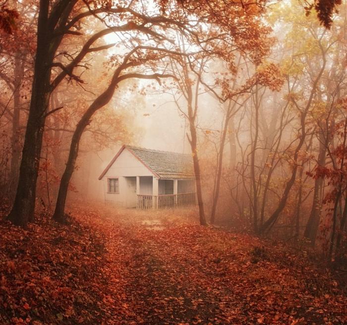 К чему снится старый или заброшенный дом