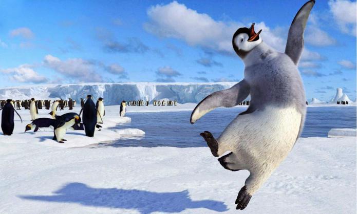 К чему снятся пингвины сонник миллера