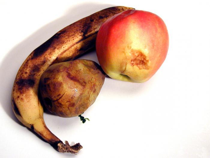 Сонник: к чему снится фрукт? К чему снятся фрукты на деревьях