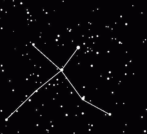 лебедь фото созвездие