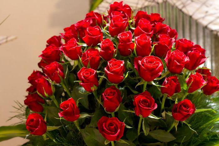 Сонник. красные розы