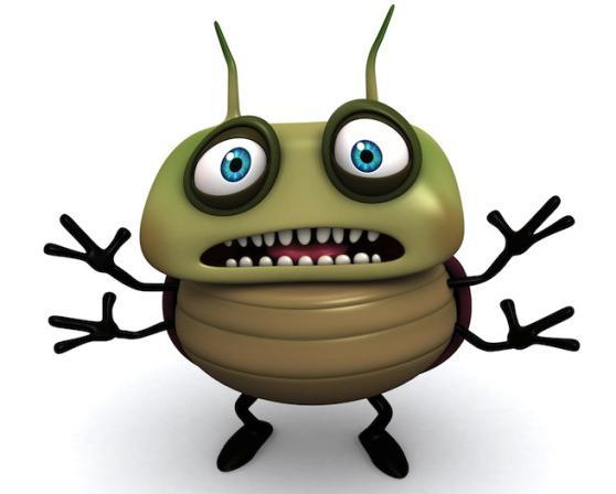 Фото К чему снится жук рогач