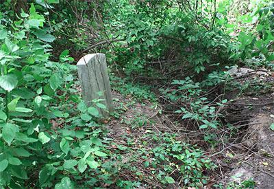кладбище когда могила и сниться
