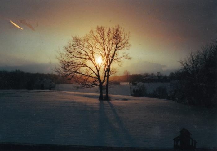 к чему снится снег белый осенью допустимо для