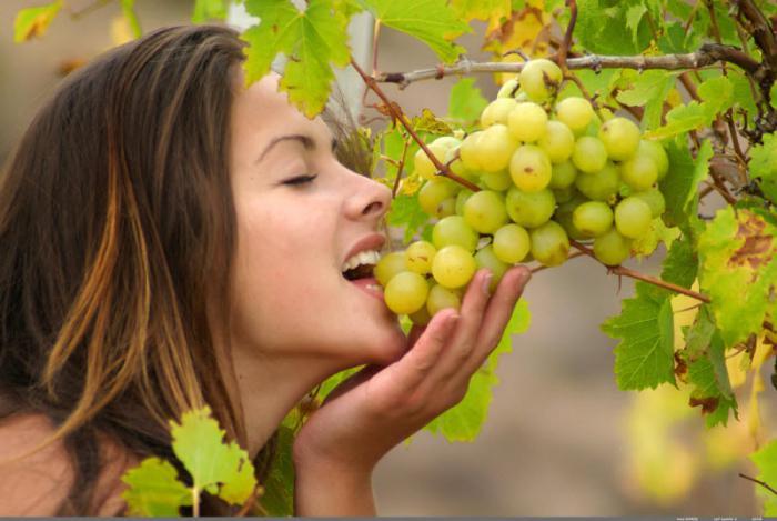 к чему снятся женщины в винограднике