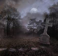 термобелье сон про кладбище что значит действия летнего