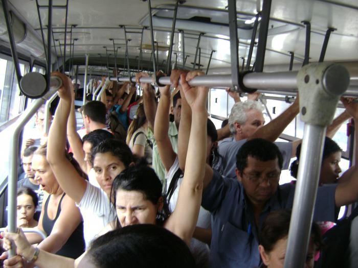 Девушка в автобусе рассказы фото 369-25