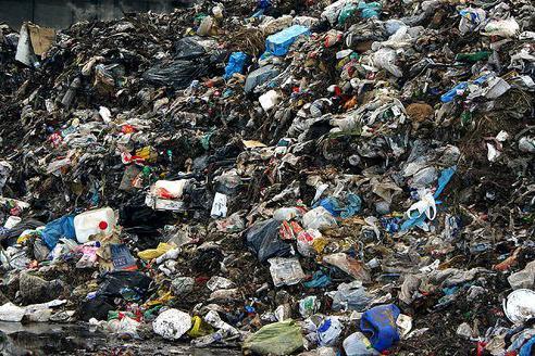 К чему снится мусор в машине